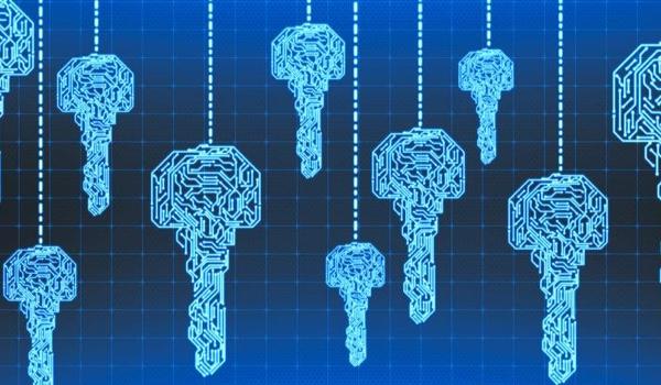 Immersive Labs Raises $40 Million for Cyber Skills Platform