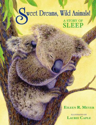 Sweet Dreams, Wild Animals !
