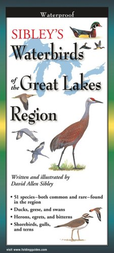 Sibley's Waterbirds of the Great Lakes Region – Folding Guide