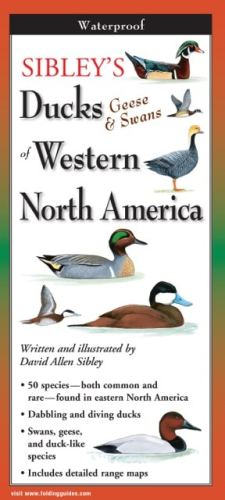 Sibley's Ducks of Western North America-Folding Guides