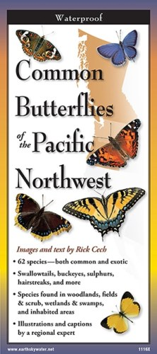 Butterflies of the Pacific Northwest – Folding Guide