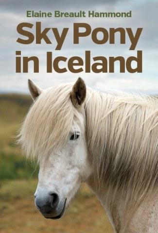 Sky Pony in Iceland