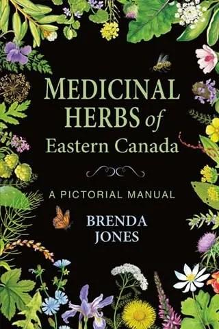 Medicinal Herbs of Eastern Canada