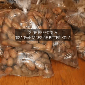 Side Effects and 16 Disadvantages of Bitter Kola