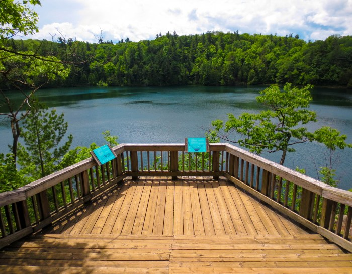 Hiking (and Protecting) Pink Lake in Gatineau Park