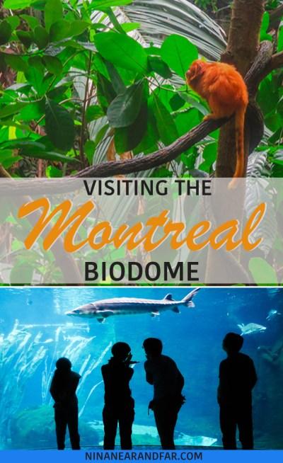 Montreal Biodome Pin