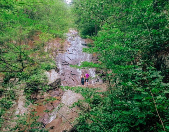6 Beautiful Gatineau Park Trails to Hike this Summer