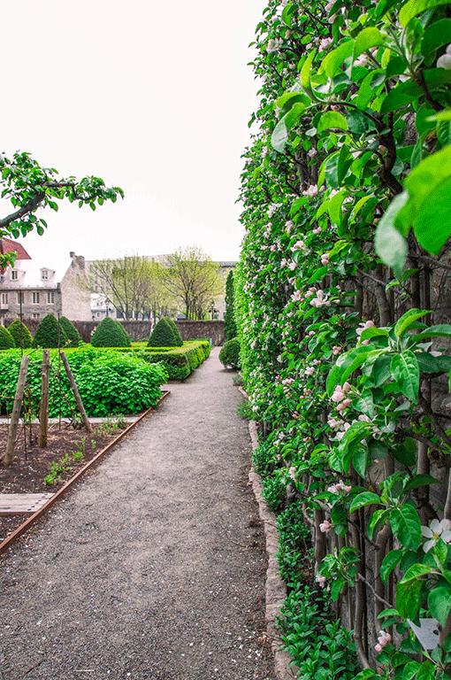 Château Ramezay Gardens