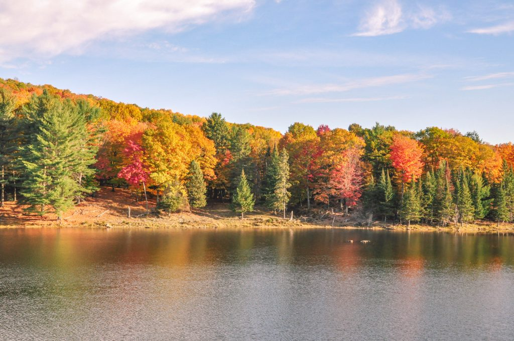 where to see fall colours in ottawa