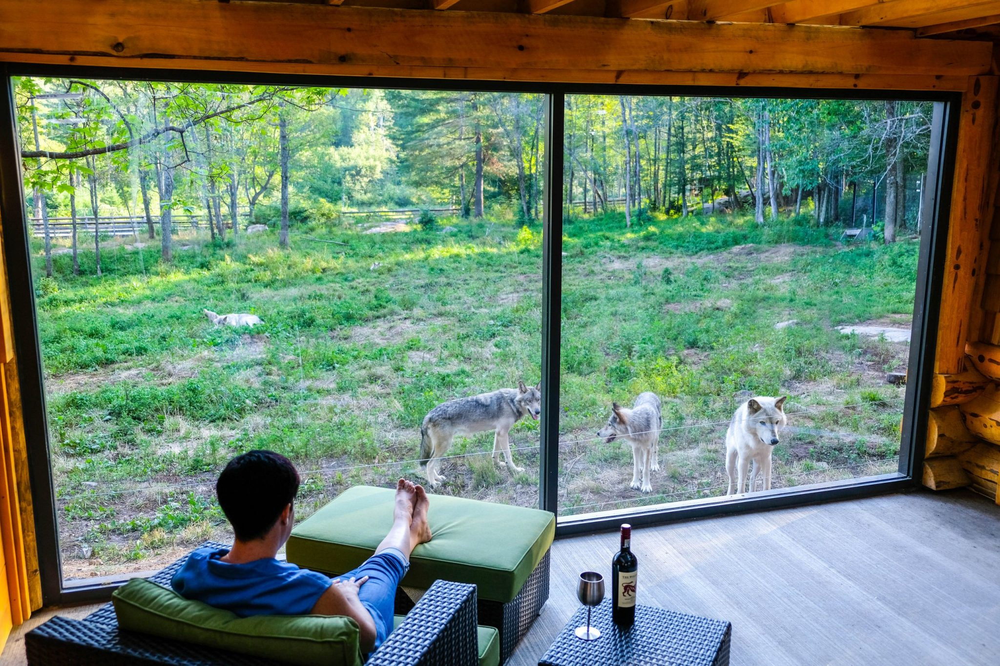 You Can Sleep With Wolves and Bring Your Friends in these Wolf Lodges in Quebec