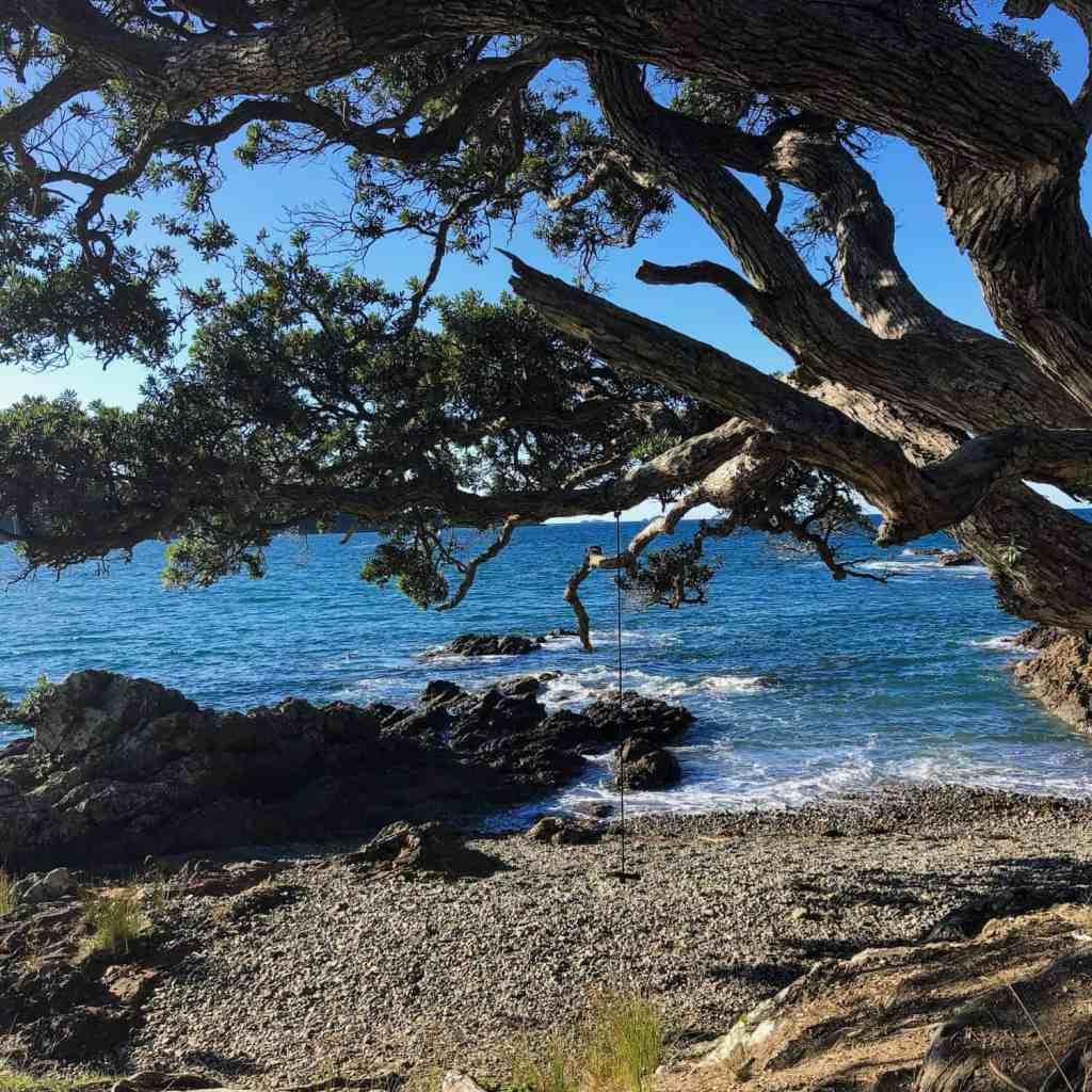 What to do in Waiheke