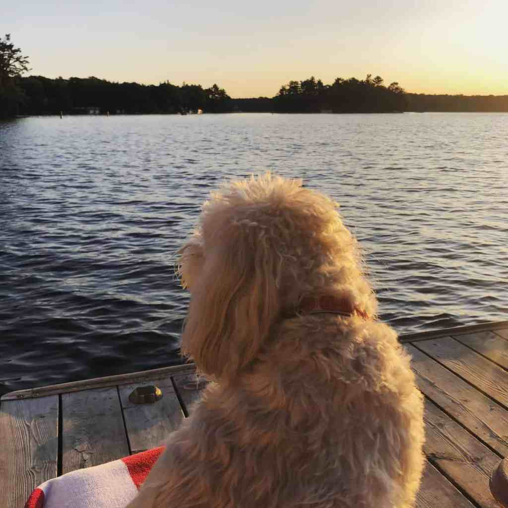 how to make the most of a summer in muskoka