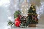 結婚後の初クリスマス!~姑から嫁へ(嫁から姑へ)渡す初めてのプレゼントは?