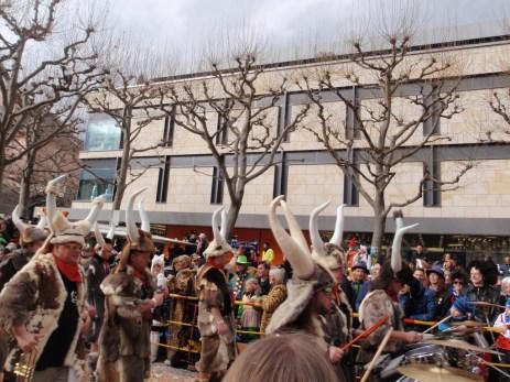 Horns & furs