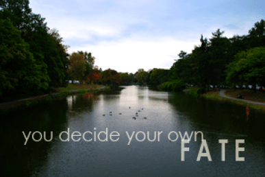 You Decide Your Own Fate