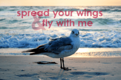 Spread Your Wings & Fly With Me