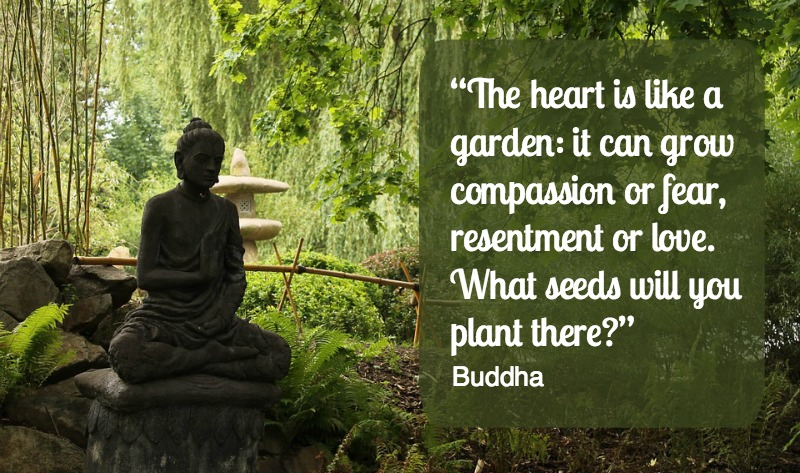 8 elementer til Zen hagen