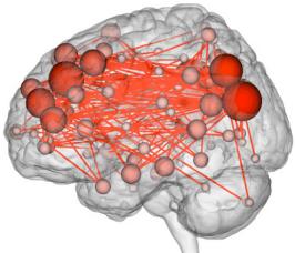 Patterns of brain activity are as unique as fingerprints