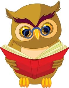 Grammar-owl_2