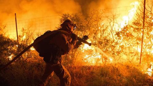 Santa Cruz, sulla costa californiana degli Stati Uniti, è minacciata da un incendio di particolare ferocia.