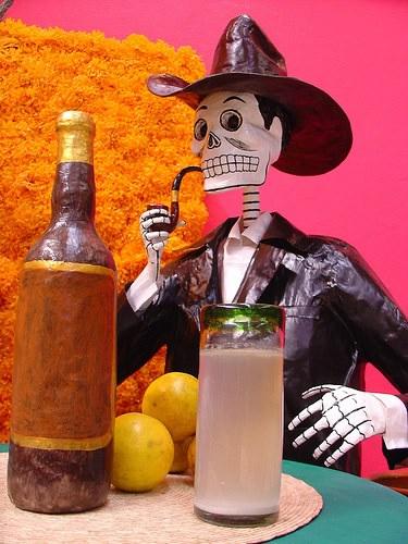 tequila_web-900x600
