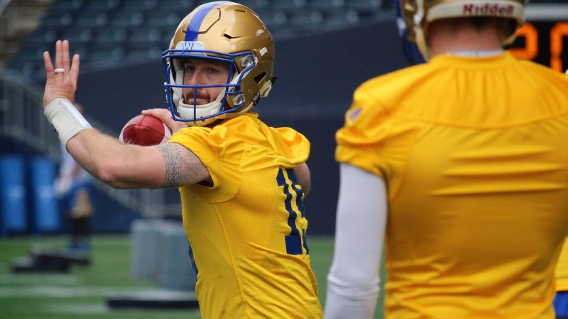 Winnipeg woe: Bombers QB Matt Nichols out 4-to-6 weeks