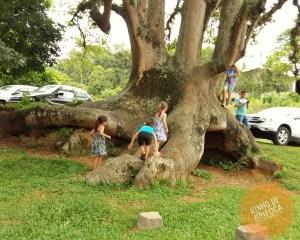 Jardins do Restaurante Nona Ludia em Bento Gonçalves