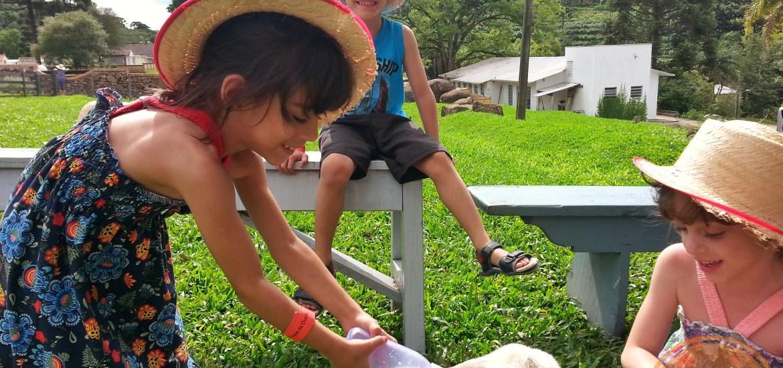 Casa da Ovelha com crianças