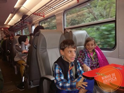 inca_rail_02