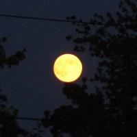 Lua Cheia, Lua Amarela
