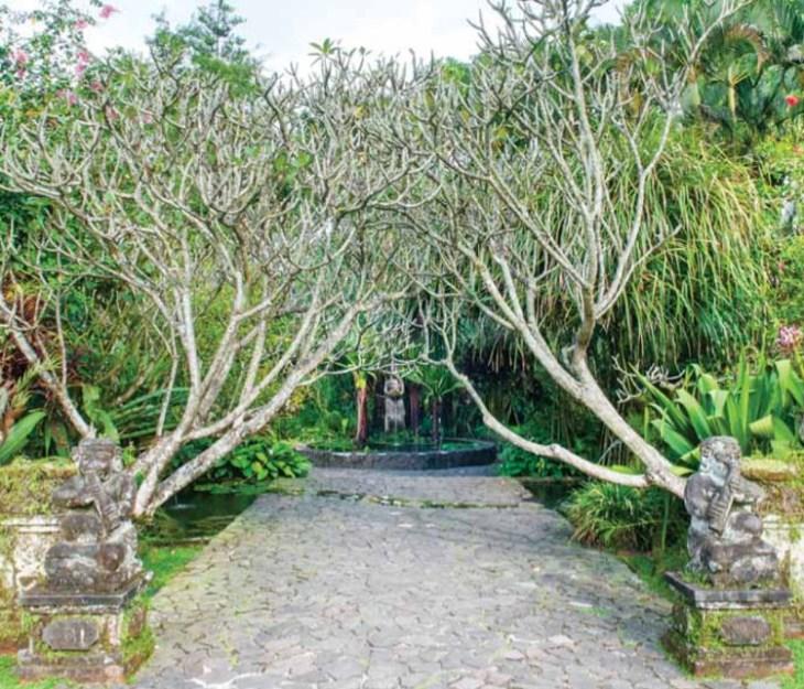 Desain Taman Gaya Bali Di Rumah Modern Nininmenulis