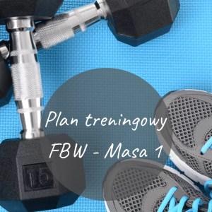 """Plan treningowy """"FBW - Masa 1"""""""