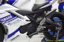 R15_racing_019 (Copy)