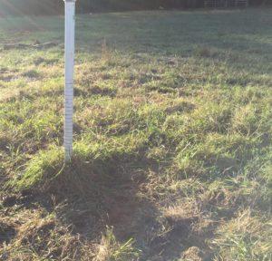 Grazing stake, post grazing