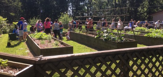 The line of folks waiting to see the piglet waiting in the garden