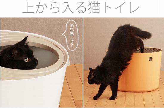 猫の上からトイレ