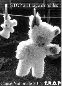 ours-pinces-216x300 snop dans peluche