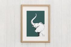 macaroomkids_animalistos-elefante-lamina-01