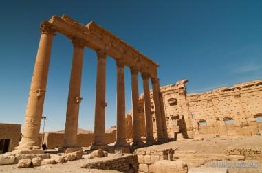 Palmyra-2