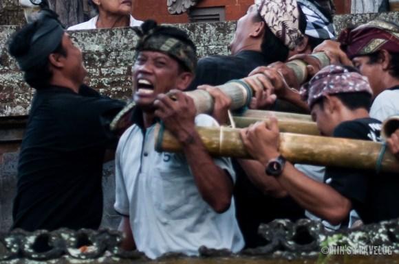 Balinese-2