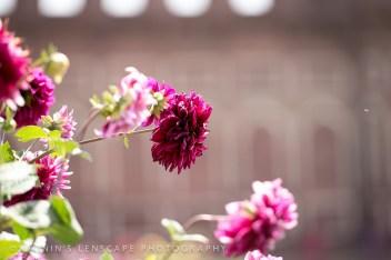 20140319-INDIA-0154