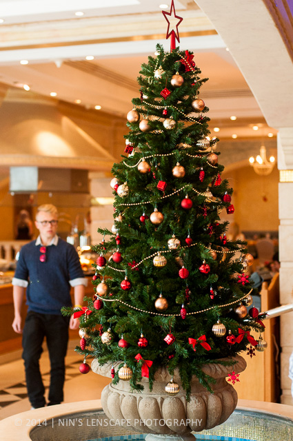 Christmas tree in many malls and hotels are a common scene in Doha