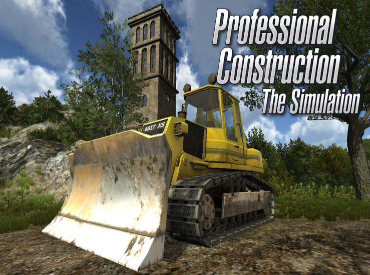 Professional Construction sur Switch...