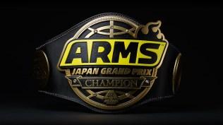 arms_japan_grand_prix_wrestling_belt_pic_1
