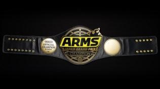 arms_japan_grand_prix_wrestling_belt_pic_4