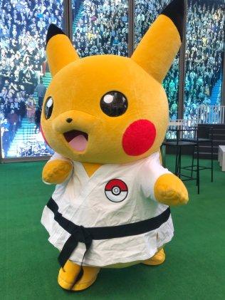 karate-pikachu-aug42018-2