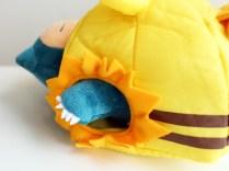 pokecen-pokemon-summer-life-photo-17