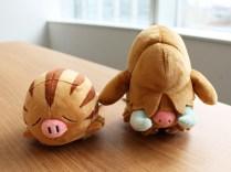 pokecen-pokemon-fit-johto-jun72019-photo-8