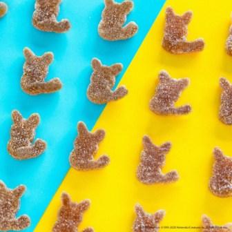 kanro-pure-gummy-pikachu-2-jul142020-3