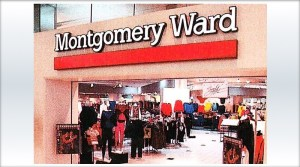 Montgomery Ward Carrying NES